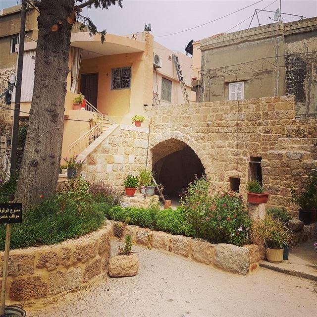 likeoldhouse lebanesehouse ancienquartier batroun batrounstyle ... (Al Batrun, Liban-Nord, Lebanon)