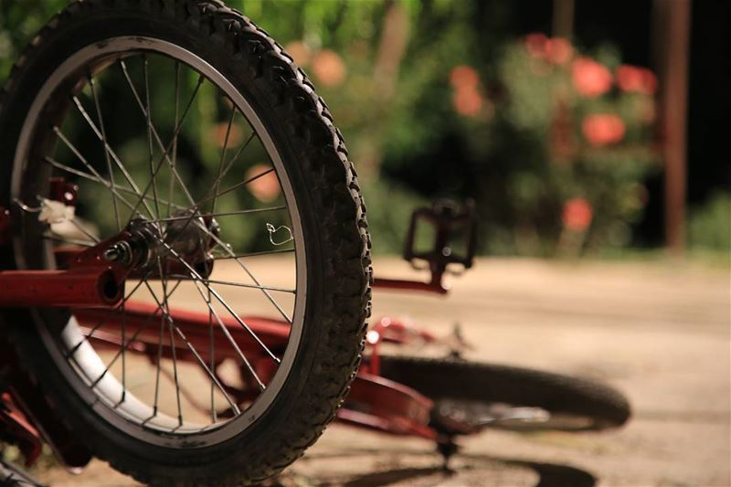 Bike to Work,Bike to Play,Bike Tomorrow,Bike Today. Bike ... (Chtaura)