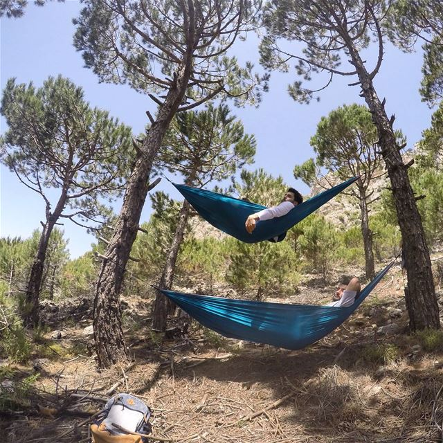 An optimist is a man who plants two acorns and buys a hammock.  tannourine... (Tannourine)