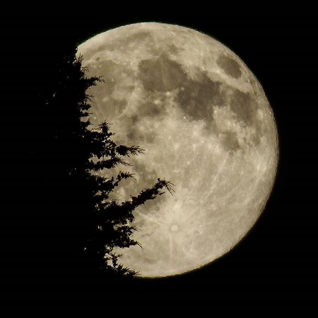 My beauty R moon fullmoon insta_lebanon ig_lebanon proudlylebanese ... (At Tannourine)