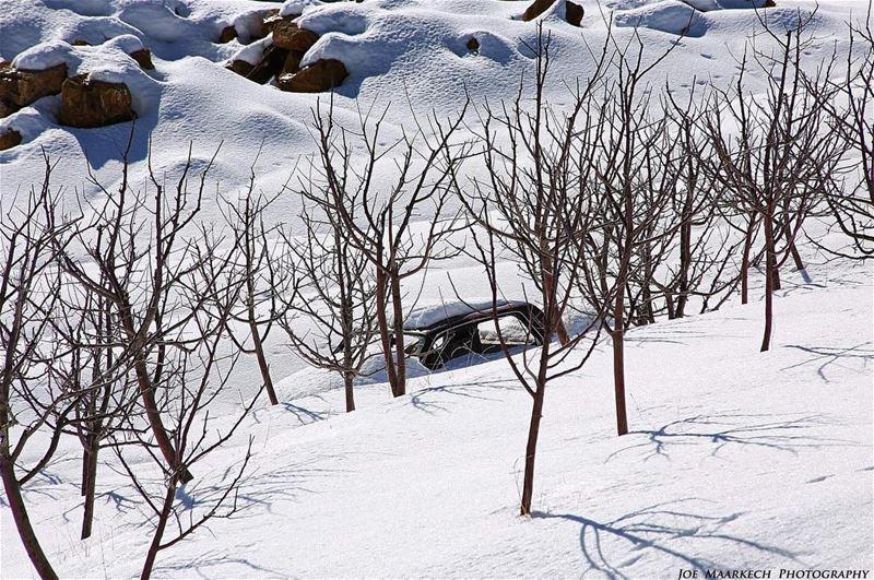 Kindness is like snow! It beautifies everything it covers. snow car ... (Baskinta, Lebanon)