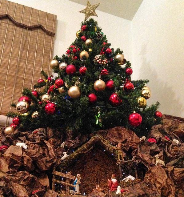 It's Christmas!🎄 christmas christmastree creche lebanon liban sapin ...