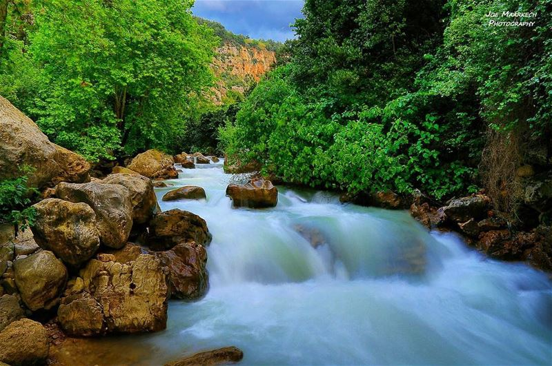 A good river is nature's life work in song. river water rock mountains... (Yahchouch Valley - Nahr Ibrahim)