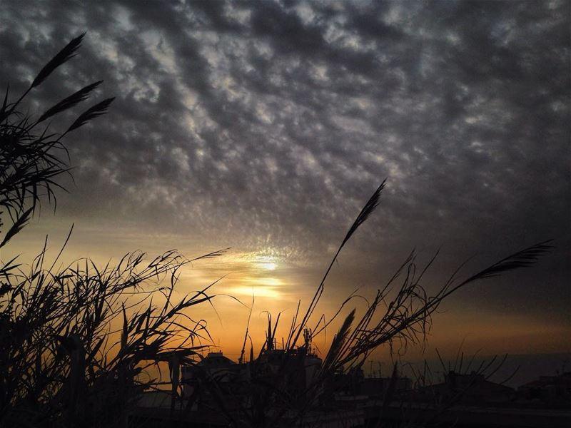 Ghazir... ghazir lebanon keseruan cloud clouds cloudporn sky ... (Ghazir)