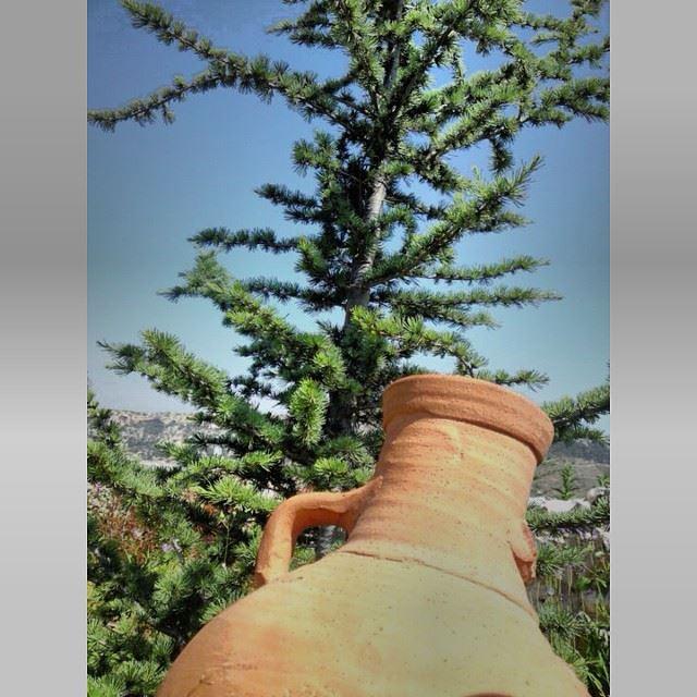 InstaSize lebanon viewfromlebanon view tree peace peacful ...