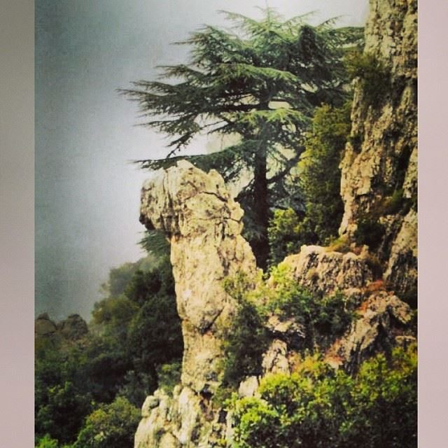 InstaSize lebanon love beauty photography viewfromlebanon view ...