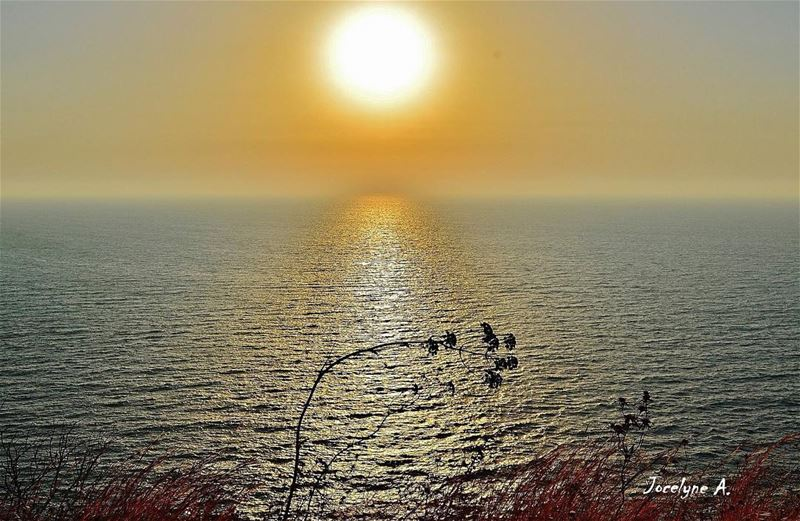 It is almost impossible to watch a sunset and not dream. dream sunset ... (Shekka - El Heri)