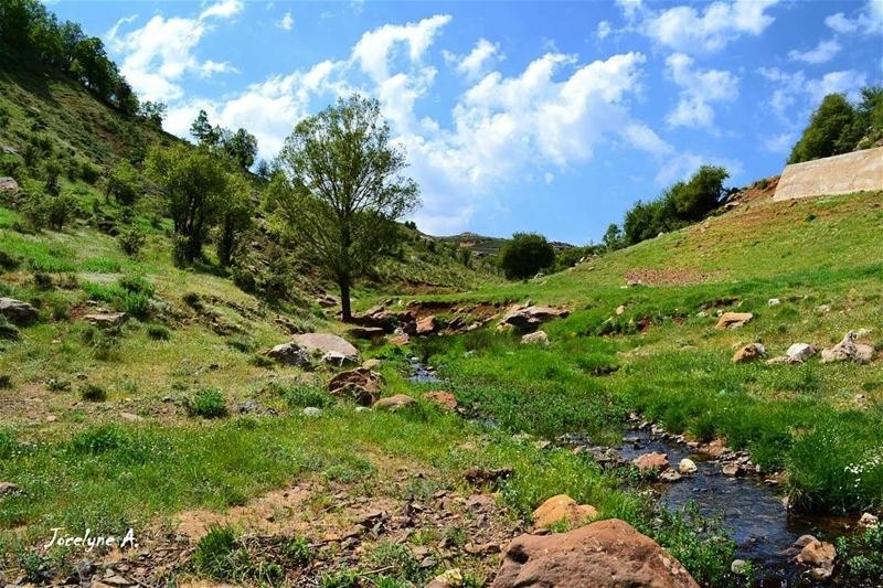 """""""Everyday is a second chance"""" tannourine beautiful beautifulday ... (Tannourine, Liban-Nord, Lebanon)"""
