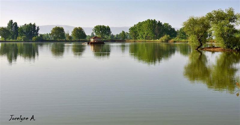 🌾 myphotography taanayel taanayellake trees lake nature like4like ... (Deïr Taanâyel, Béqaa, Lebanon)