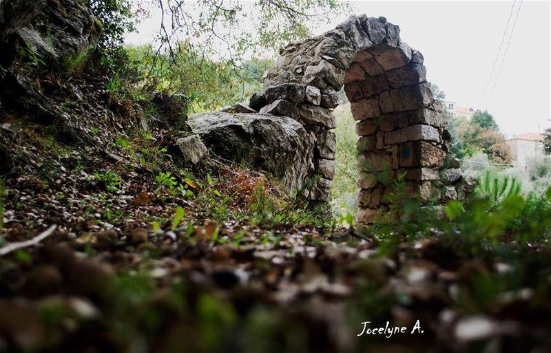 old church door peace peaceful peacfulplace green autumn ... (Hardîne, Liban-Nord, Lebanon)