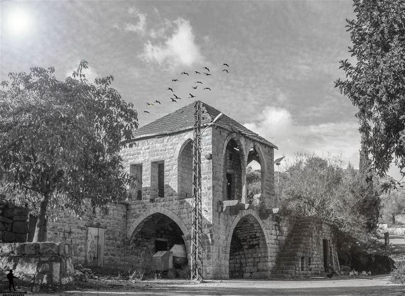 .وقصص خلصت قبل ما تبلش oldhouse blackandwhite birds chouf lebanon...