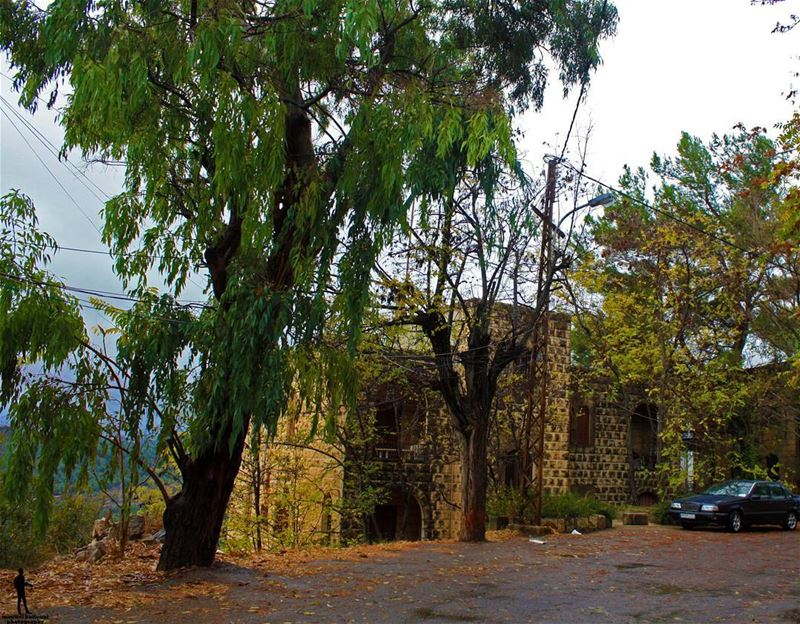 Cold days , warm hearts winter colddays coldweather chouf...