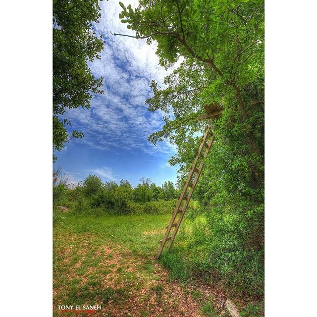 landscape landscape_lovers photooftheday photographysouls ... (Abdelli, Liban-Nord, Lebanon)