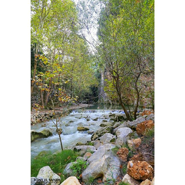 beautifulnature beautifullebanon naturephotography nature ... (Yahchouch Valley - Nahr Ibrahim)
