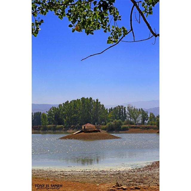 beautifulnature beautifullebanon naturephotography nature ... (Lac De Taanayel)
