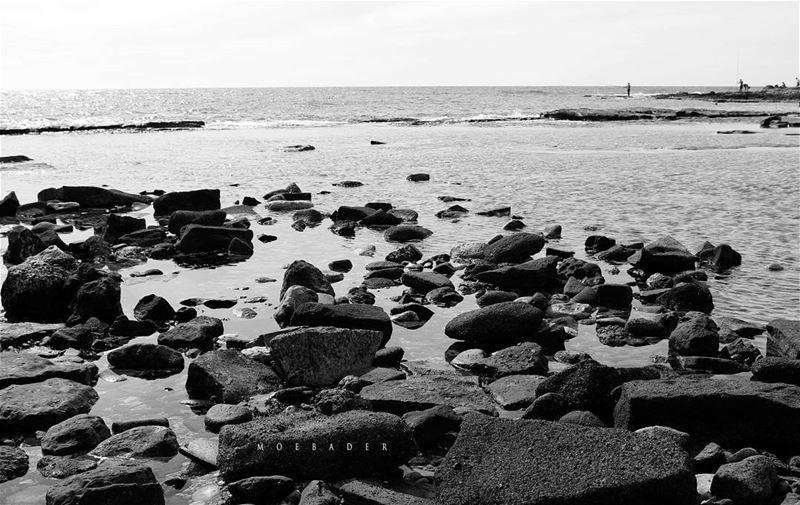 Runaway••🕵 landscaping landscape livelovejnoub livelovebeirut ... (Nakoura)