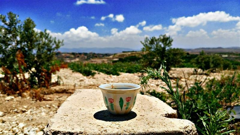 Good morning dear followers with this amazing view ☕Photo taken by @place (Ghassâniye, Al Janub, Lebanon)
