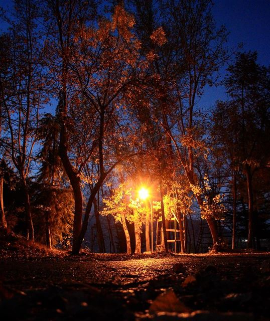 Early nights wrap longer hours around the lights.. night nightout ... (El Laklouk, Mont-Liban, Lebanon)