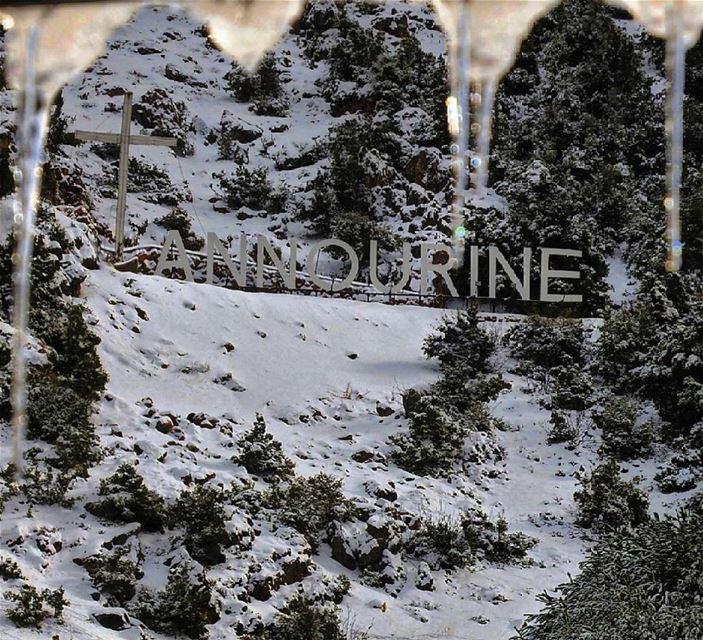 Tannourine is freezing. lebanon livelovelebanon livelovebeirut ... (Tannourine)