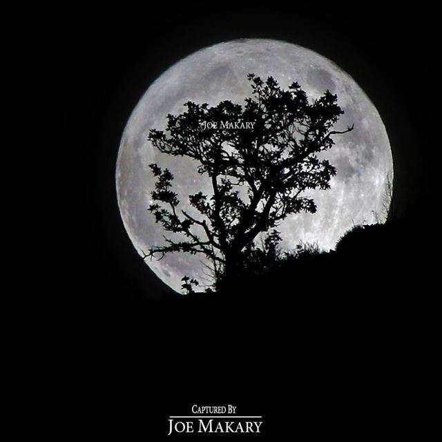 ehden moon supermoon bigmoon night light beautifullebanon ...