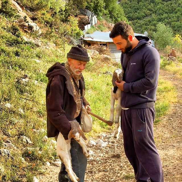 With the oldest shepherd in tannourine Barhoum..we love him. tannourine ...