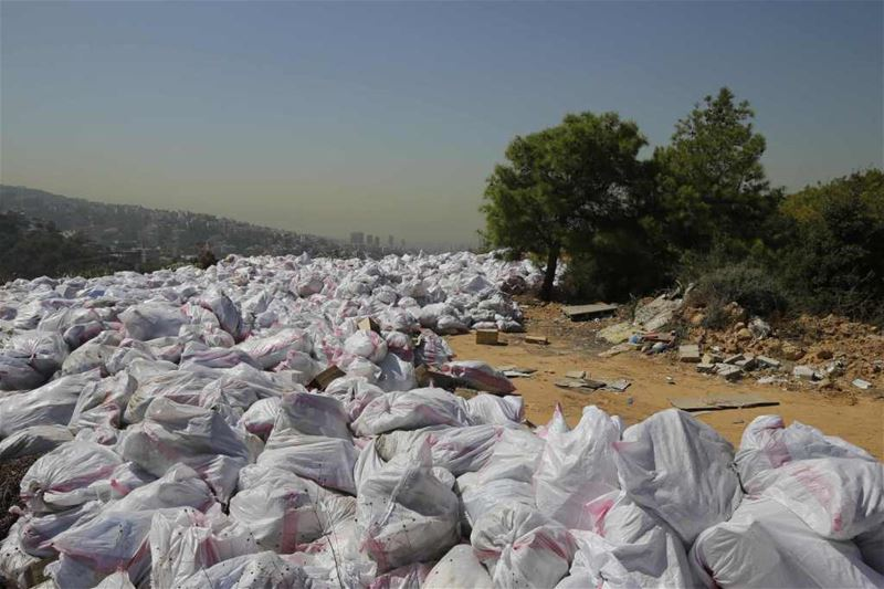 White Garbage Bags Forming a River in the Forest of Bsalim