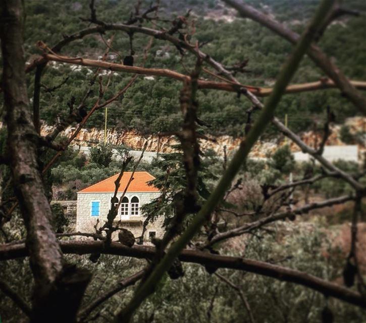 instame instamood instahub instacool love lebanon hael jbeil amchit... (Hakel Village club)