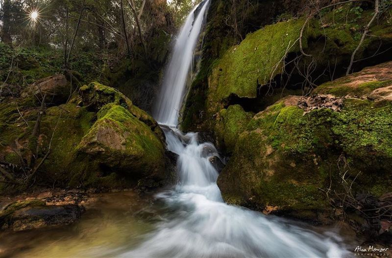 running river kahlouneyye green photography canon canonme 5ds ... (Kahlounieh)