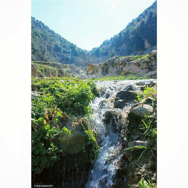 tb kfarhabou northlebanon river mountains nature water green ... (Syr Al-Denniyeh&Kfar Habo)