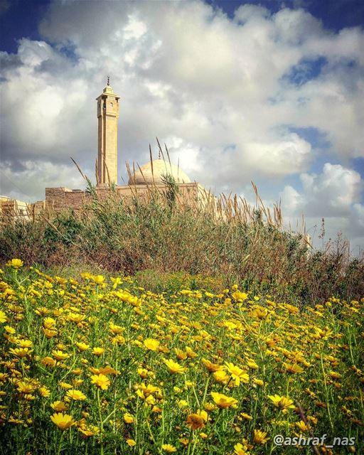 أنا زهرة من زهورك باركني ساعدنيبالدمع بتزرعني بالفرح بتحصدنيعدلك فاض عليي (Tyre, Lebanon)
