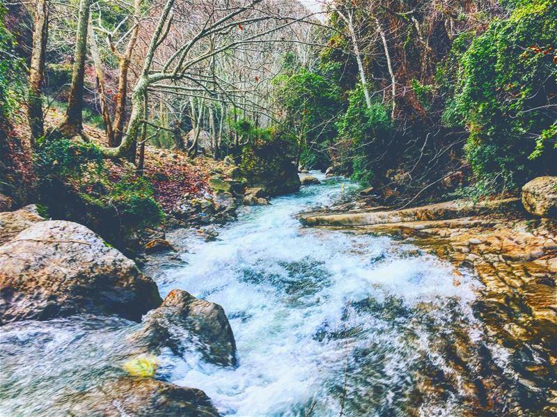 🇱🇧❤ hiking camping campinglife lebanon lebanon_hdr hikinglife ... (Kfarhilda, North)