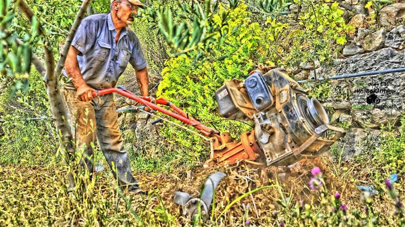 livelovelebanon  livelovechouf  livelovenature  farmer  hdr_pics ...