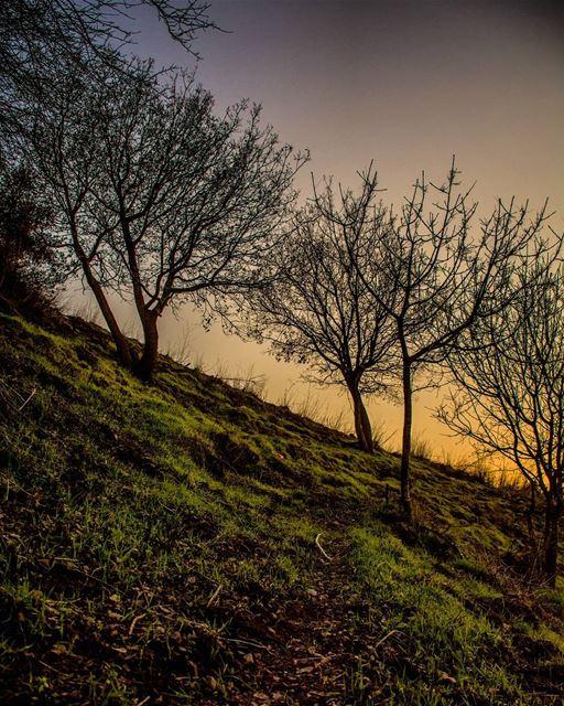 qabrikha nikon nikond7100 d7100 liban lebanon sunset Sunshine ... (Qabrikha, Al Janub, Lebanon)