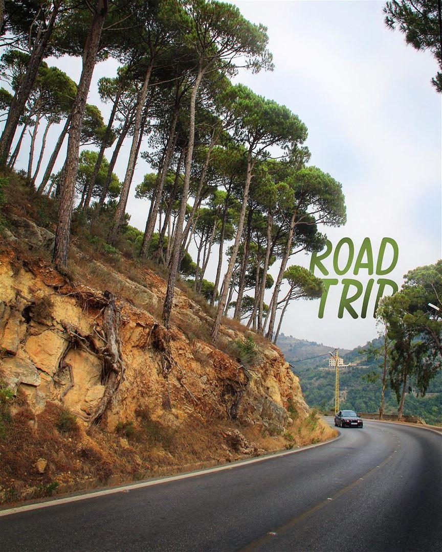 Tripping over............ roadtrip road trip car nature ... (Lebanon)