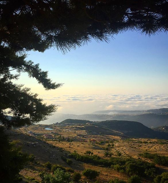 There's a place that lies between what's real and surreal. meetmethere ... (Ehden, Lebanon)