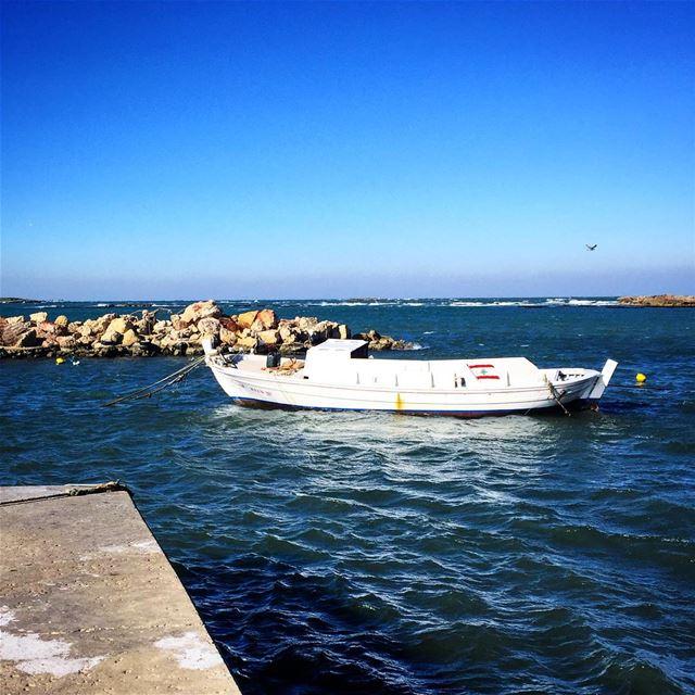 Good morning Lebanon goodmorning morningwalk seaside corniche ... (Corniche El Mina Tripoli)