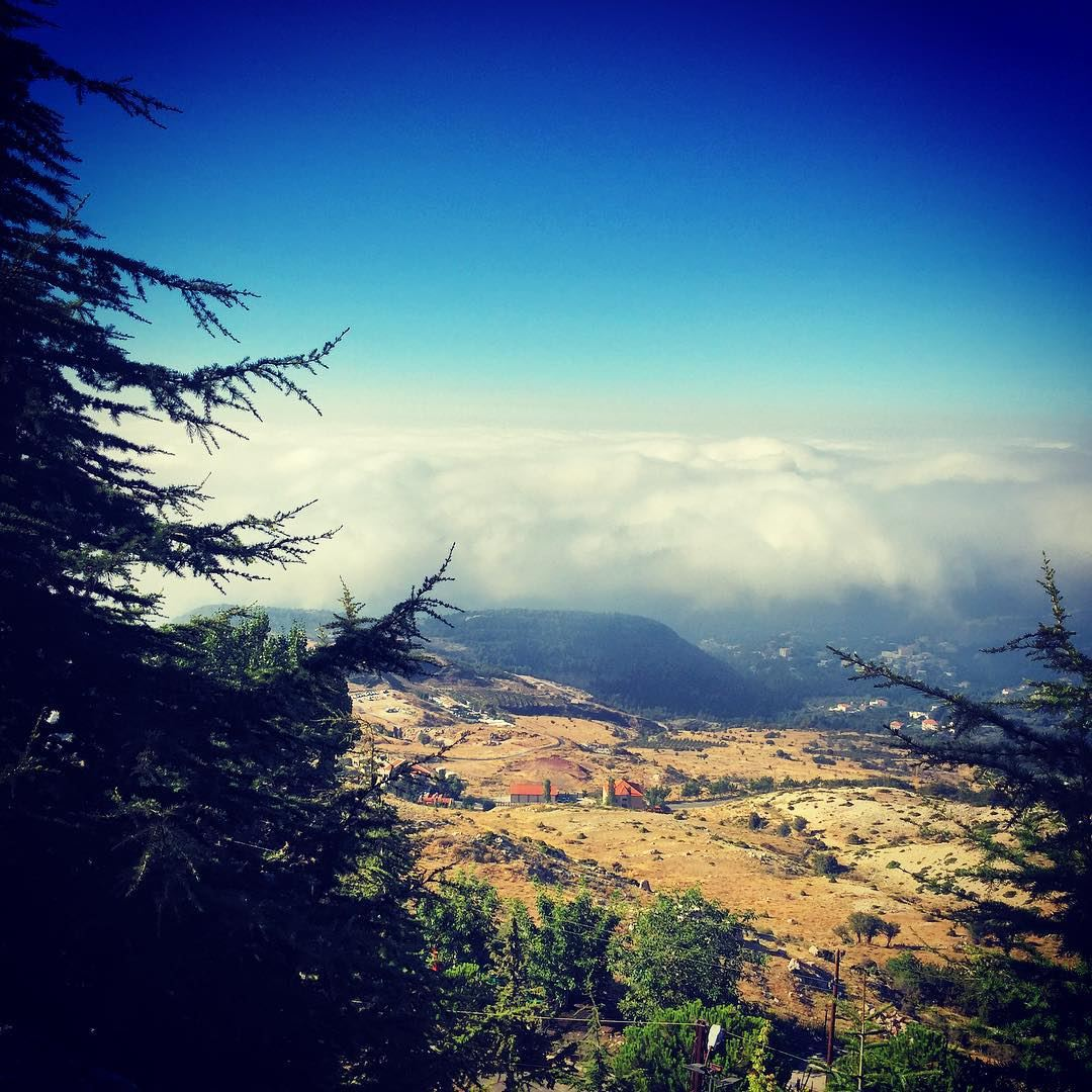 morning  hike  cedars  beautiful  nature  hiking  ehden  sky  clouds ...