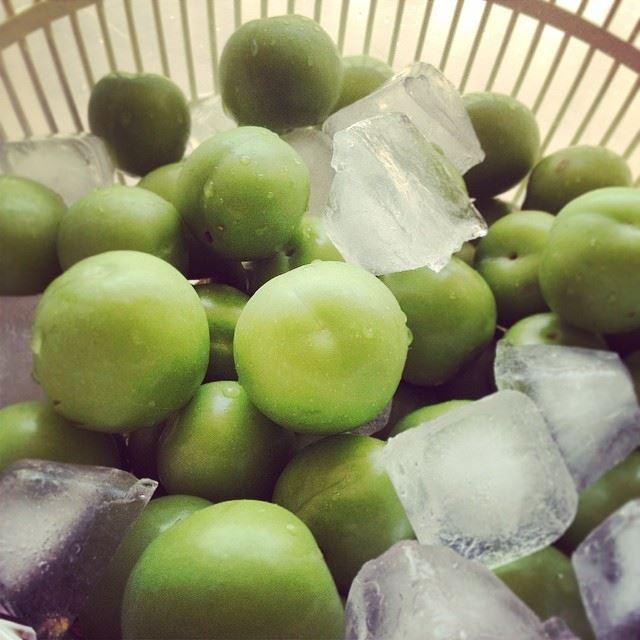 favorite green lebanese sour crunchy salt fruit ice eat love ...