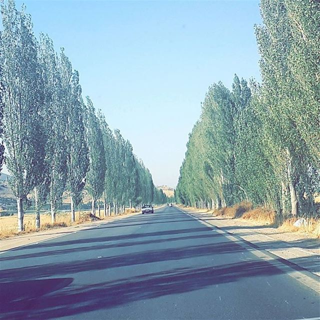 Let's Go On A RoadTrip 🚗🍃 roadtrip Bekaa ... (`Ammiq, Béqaa, Lebanon)