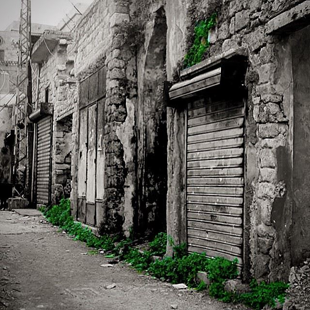 South  Lebanon  old  Saida  souks  after  war  abandoned  street  igers ...