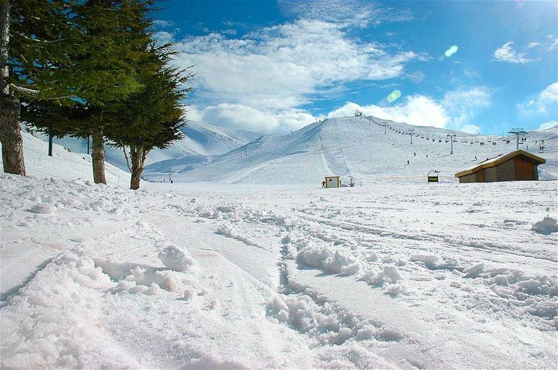 مين مشتاق لل الثلج 🙃 صباح_الخير من فاريا لبنان .. الأبيض يليق بك 😁 ... (Lebanon)