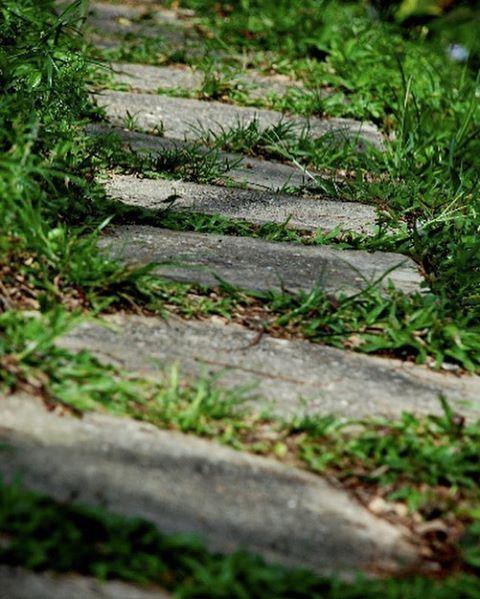 صباح_الخير أول خطوة كل صباح 💤 لبنان السعودية خطوة goodmorning lebanon... (Tyre, Lebanon)