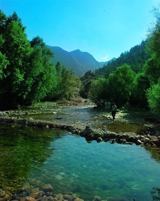 تائهة تلك الأرواح التي تخشى الحياة .. تصبحون_على_خير يا عرب ⏳ لبنان نهر (`Almat, Mont-Liban, Lebanon)