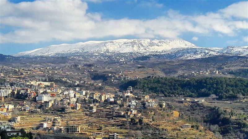 Meshmesh topped by the famous Qammouaa area. Amazing! LiveLoveLebanon ... (مشمش عكار)