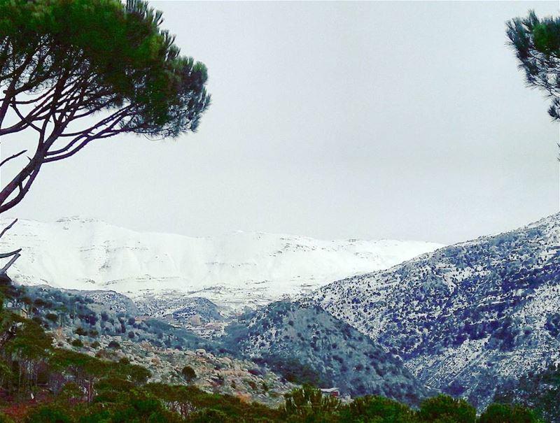 Baskinta Lebanon Lebanese AlMaten Sannine landscape Trees Snow ... (Baskinta, Lebanon)