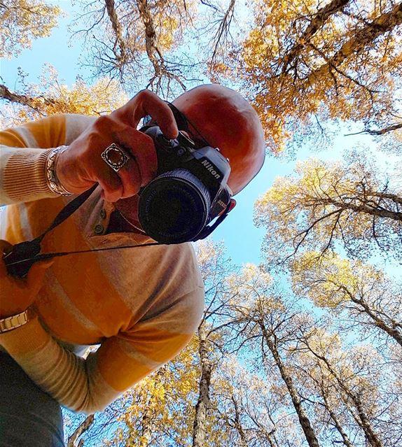 Autumn vibes from the North 🍂🍂🍂 LiveLoveAkkar Akkar AzerForest ... (غابة العزر-القموعة)