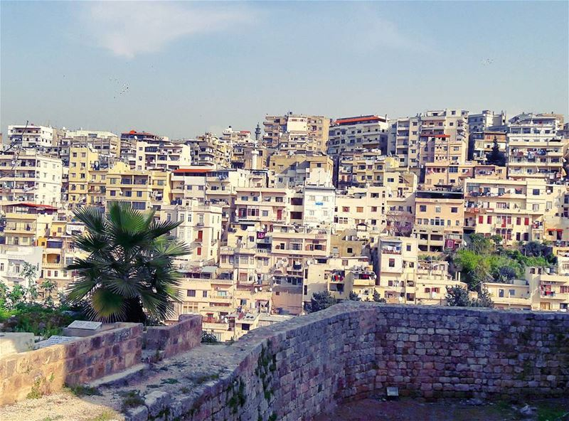 Good morning my Tripoli 💓There is evidence of settlement in Tripoli... (Tripoli, Lebanon)