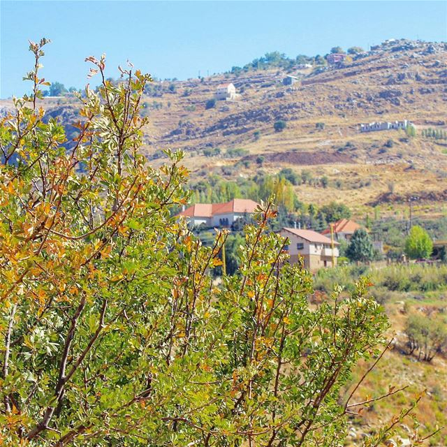 autumncolors autumnstyle (Laqlouq)