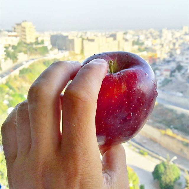 Lebanese apples are the sexiest ever 🍎🍎🍎  EatLebaneseApples Support ... (Abou Samra, Tripoli, Lebanon)