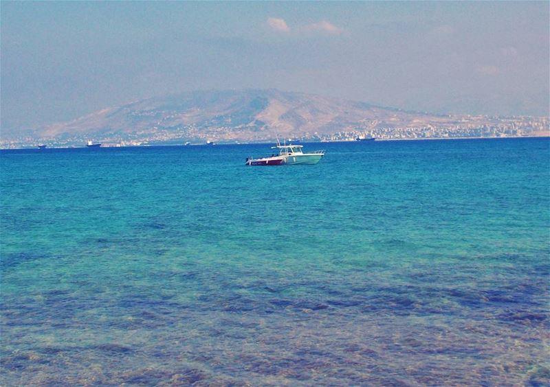 Hope you're having a great SUNday peeps 🌞 Beautiful refreshing day ... (Rabbits Island- El Mina.)